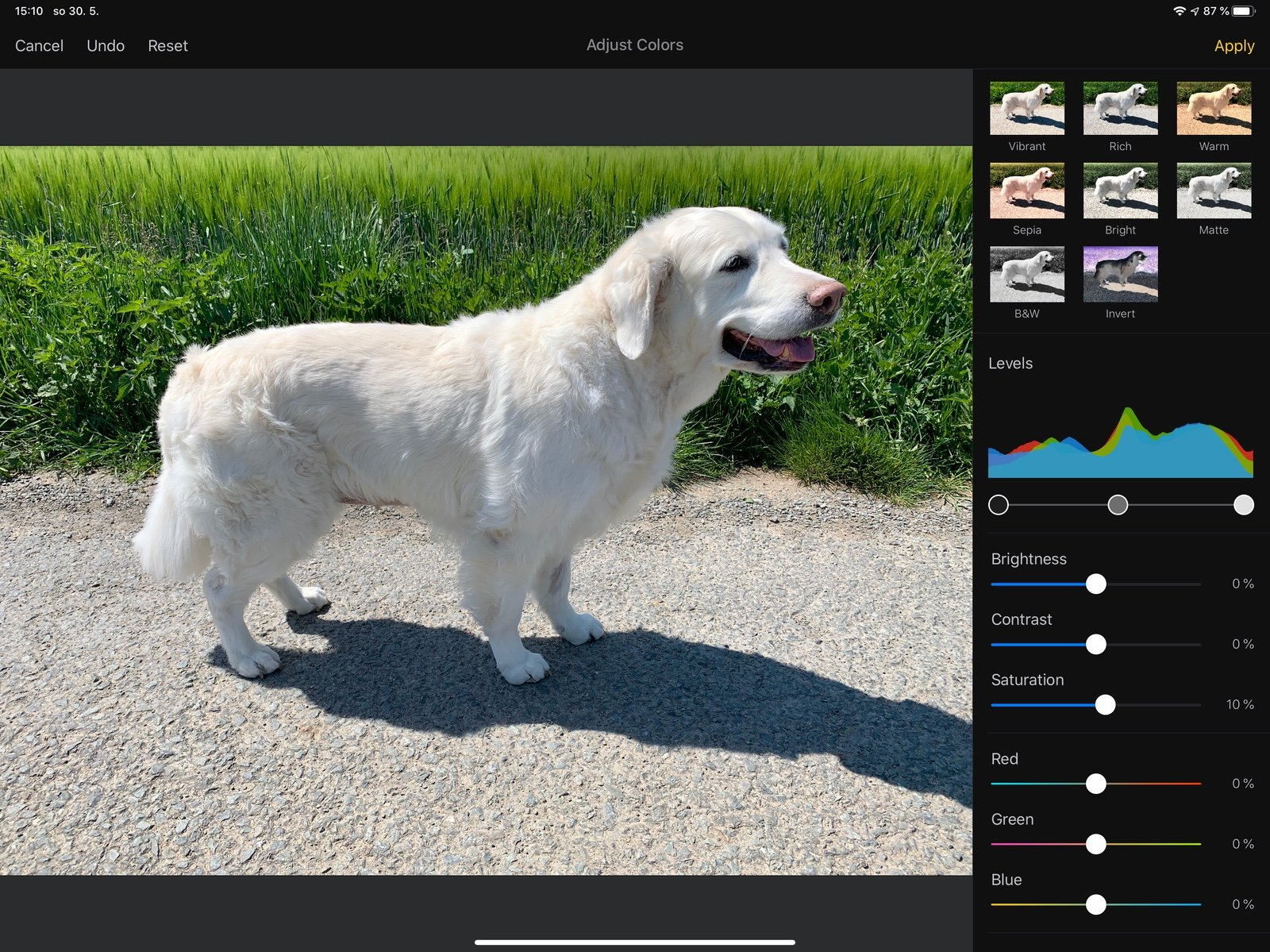 Aplikace Pixelmator na iPadu Pro